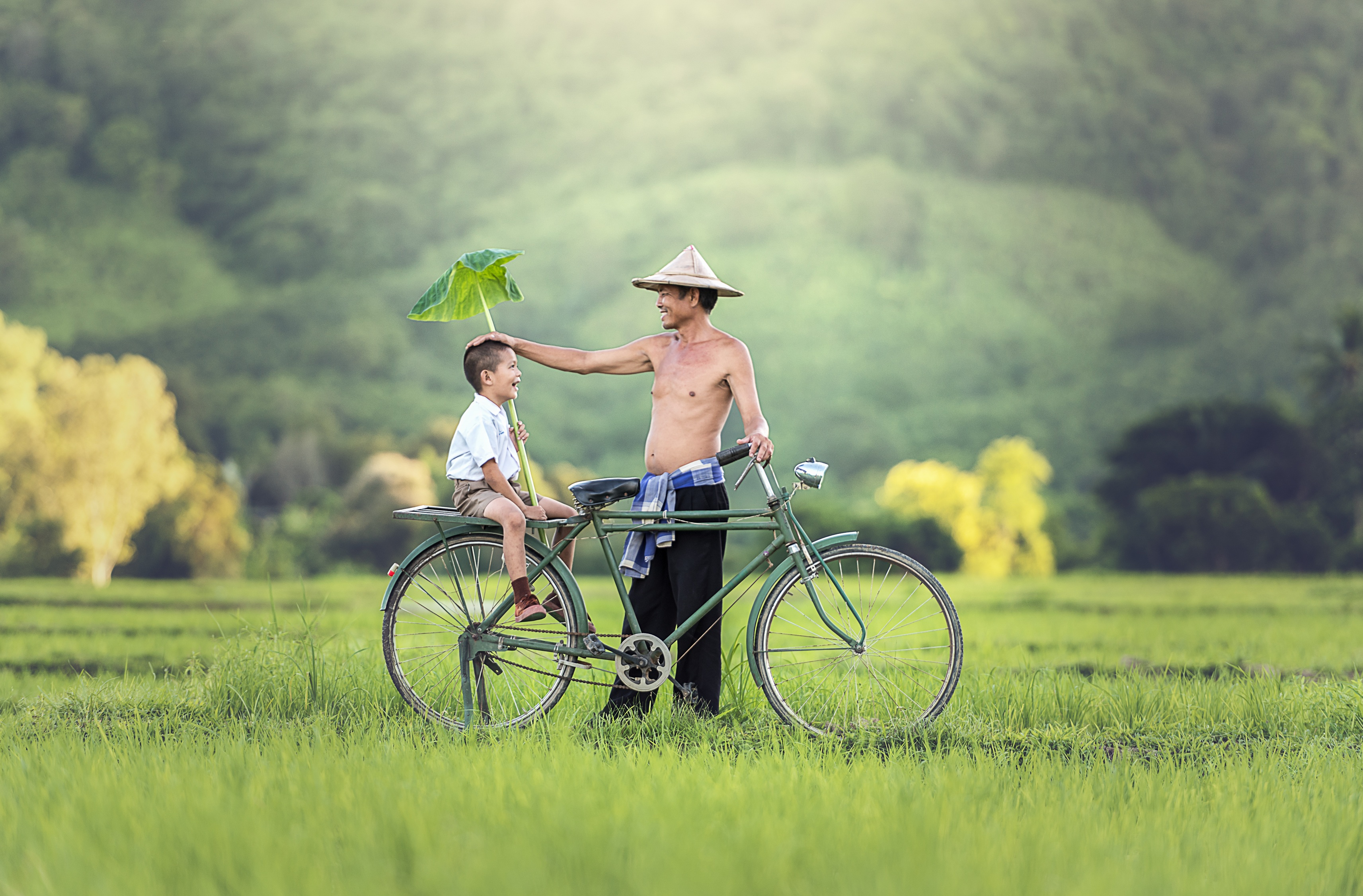bicycle-1822528